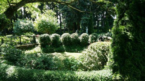 Park wokół dworu wSikorzynie (2)